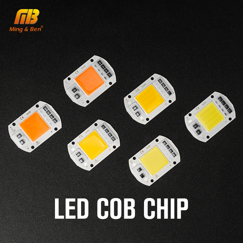 10pcs LED COB Chip AC 220V 20W 30W 50W DIY LED Beads For LED Floodlight Spotlight Smart IC Warm White Cold White Grow Light