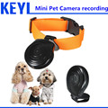 hidden mini camera Pet Cam Camera Collar Video Recorder Monitor Suitable  New Overvalue Top Quality DigitalFor Dogs Cats Puppy