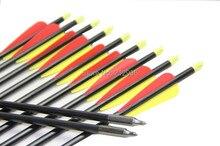 Longbowmaker 12PCS 32 Inches Fiberglass Target Practice Arrows F2YRT2