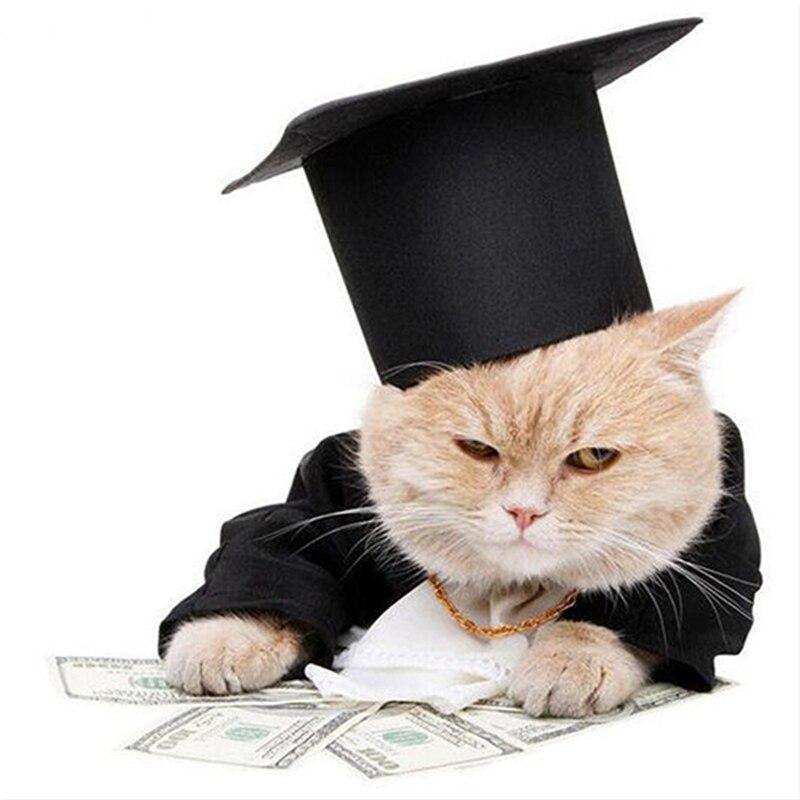 Кот с деньгами вышивка