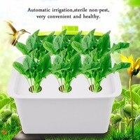 6 Holes 220V/110V Plant Site Hydroponic System Indoor Garden Cabinet Box Grow Kit Bubble Garden Pots Planters Nursery Pots Hot