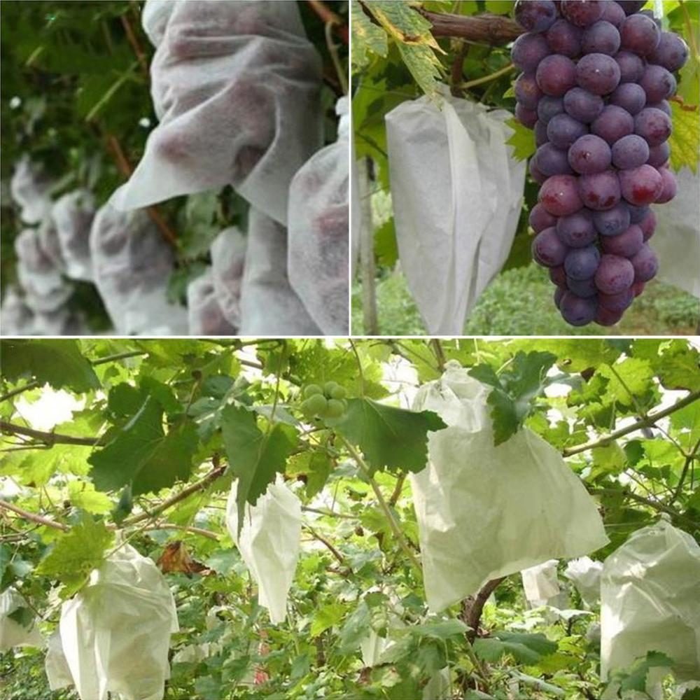 100Pcs Grape Protection Bag Anti Bird Moisture Insect Net Bag Vegetable Fruit Protect Breeding Bag Prevent Fruit Tree Mosquitoes in Grow Bags from Home Garden