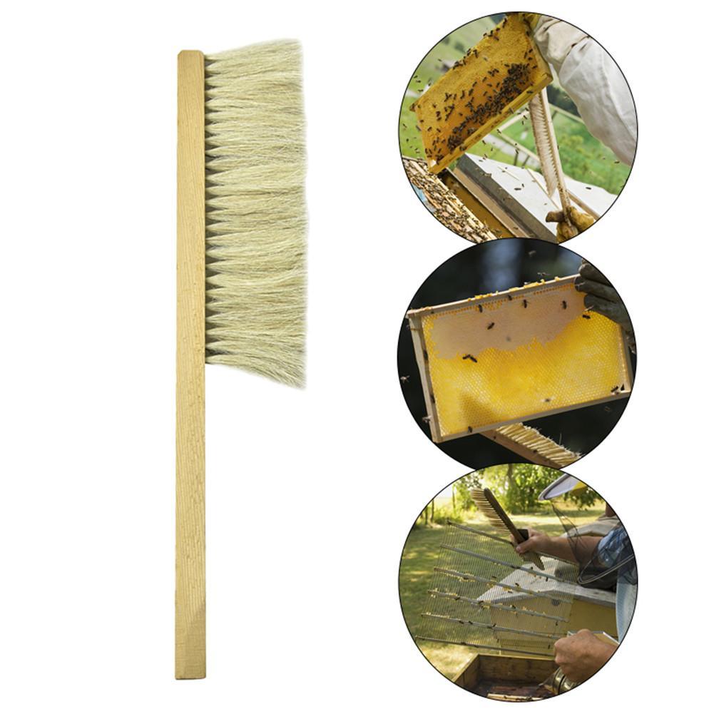 Image 5 - Инструменты для пчеловодства деревянная ОСА щетка сметка два ряда волосы конского хвоста новая пчелиная щетка оборудование для пчеловодства-in Инструменты для пчеловодства from Дом и животные
