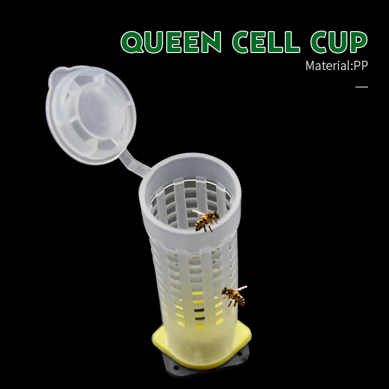 Brand 10pcs Lightweight Plastic Queen Cell Cup Beekeeping Tools Cages Bee Plastic Plastic Mugs Beekeeper Tools Equipment