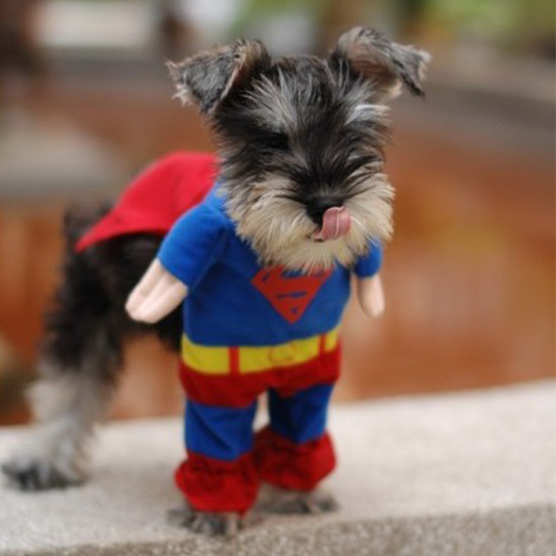 ideacherry Lovely Pet Cat Dog Superman Costume Suit Puppy Dog Clothes Outfit Superhero Apparel Clothing for Dogs-in Dog Coats u0026 Jackets from Home u0026 Garden ... & ideacherry Lovely Pet Cat Dog Superman Costume Suit Puppy Dog ...
