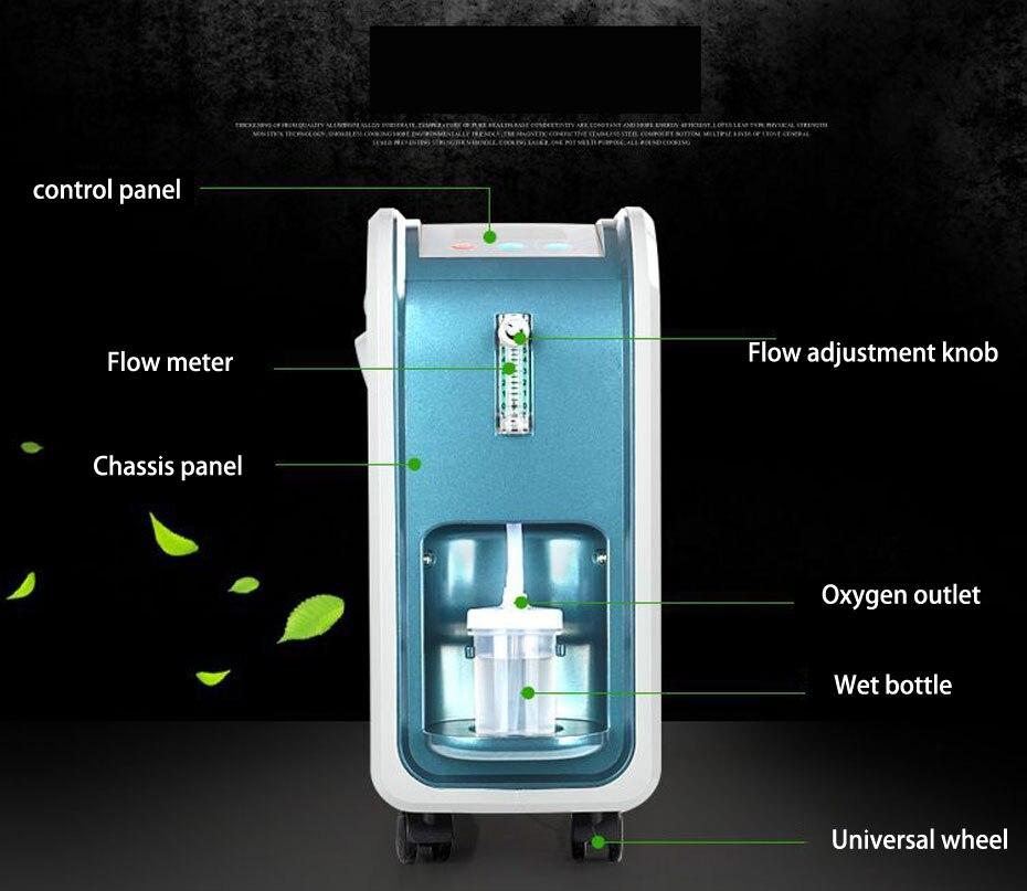 Hohe reinheit multifunktionale sauerstoff Konzentrator Generator Haushalt Tragbare Sauerstoff Maschine Hause Luft Reiniger 6L