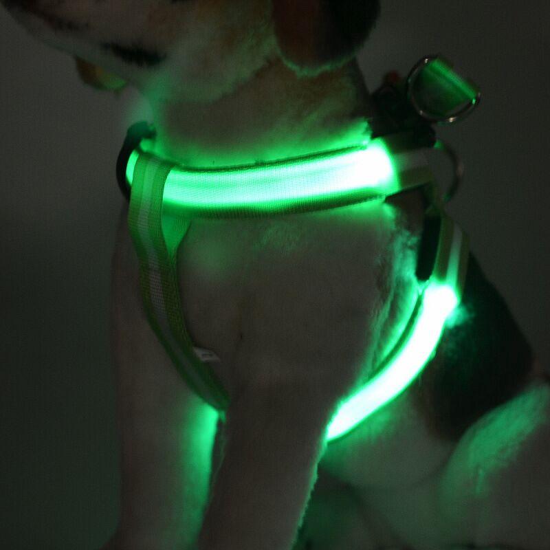 FD40 pas pas: svetleč pas za hišne svetleče pasje pas za srednje velike pse