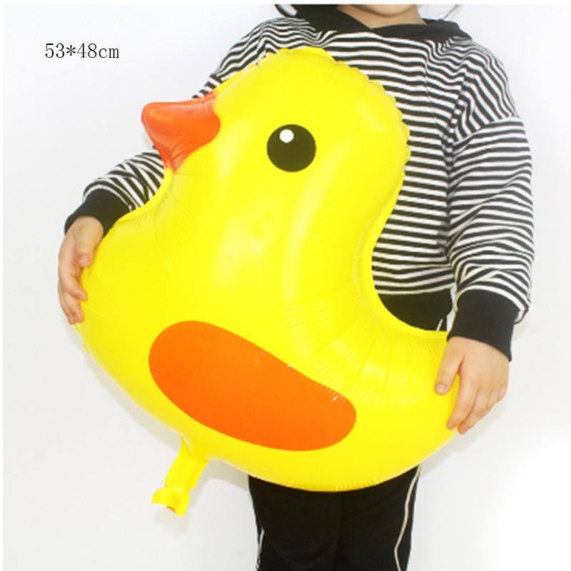 wang hong duck