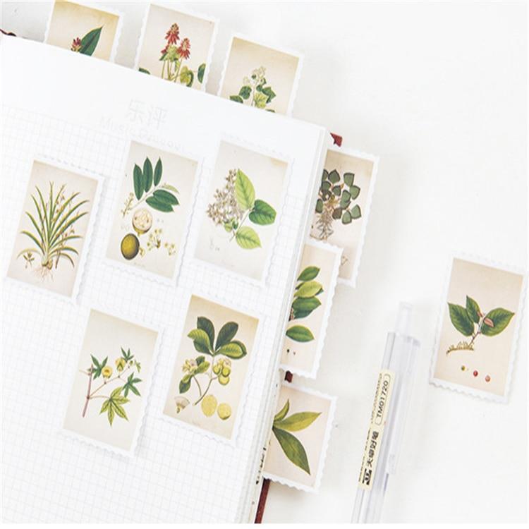 20 pacotes lote plantas do vintage mini