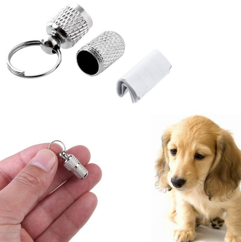 Pet Dog Cat Address Label Barrel Storage Tube Silver Identification Card Pet This Tube Contains Important Emergency Information