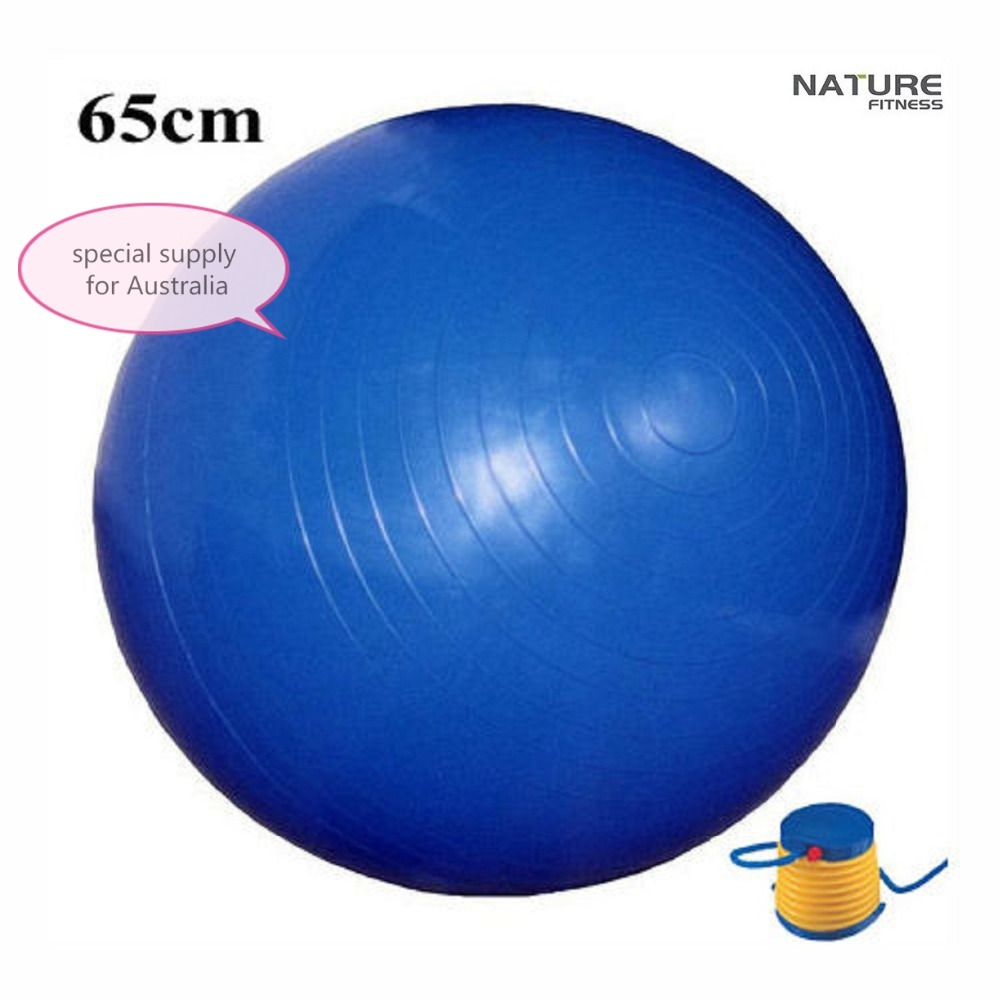 Balance Ball For Weight Loss: 65CM Home Exercise Workout Fitness Yoga Ball For Weight