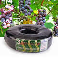 50M Plastic Steel Wire Film Band Film Tension Rope Fasten Band for Vegetables Greenhouse Agricultural Climbing Vine Holder