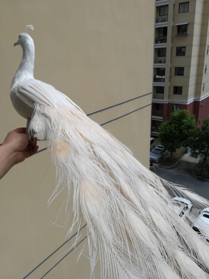 Настоящая жизнь птица белые перья птица Peafowls большой 120 см белый павлин украшение для дома и сада съемка реквизит подарок h1489