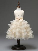 Mode Pasen Kleding Cupcake Lagen Meisjes Jurken Speciale Gelegenheid Baby Meisje Roze Jurk Mouwloos Infant Strass Outfit