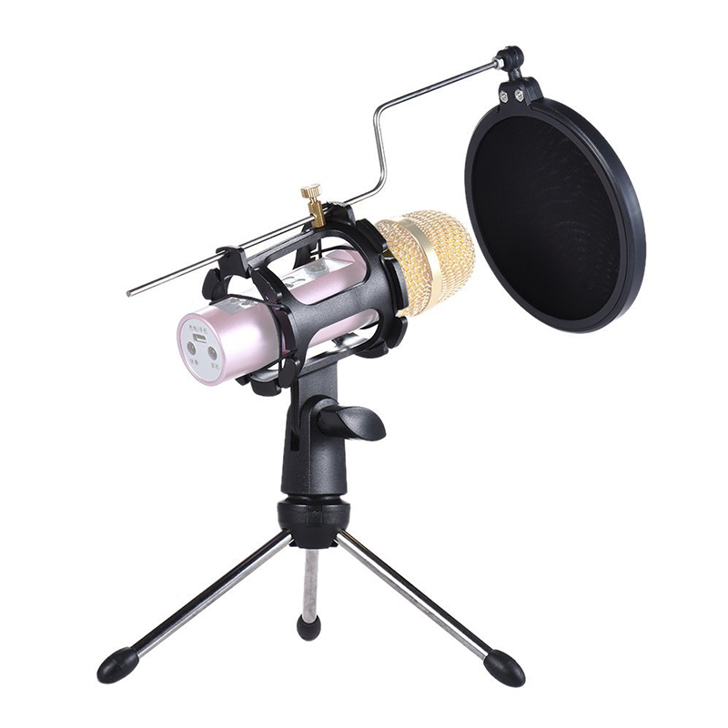 Professional Mic Stand Adjustable Microphone Holder With Windscreen Filter Studio Audio Microphone Stands Desktop Mic Holders