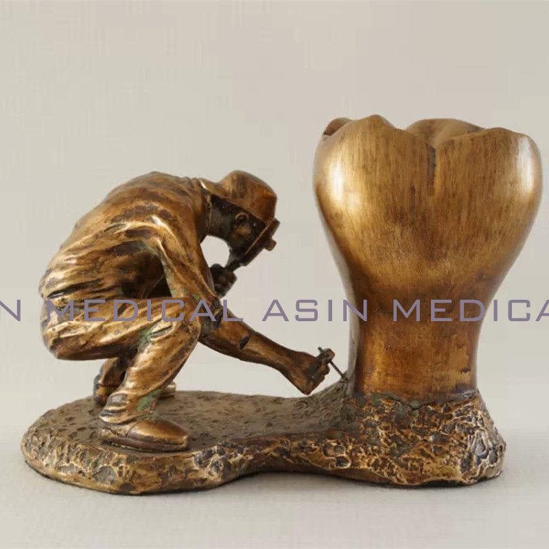 2016 Dental model copper material Copper statue of man and teeth tooth model dental pathology teeth model simranjeet kaur amaninder singh and pranav gupta surface properties of dental materials under simulated tooth wear