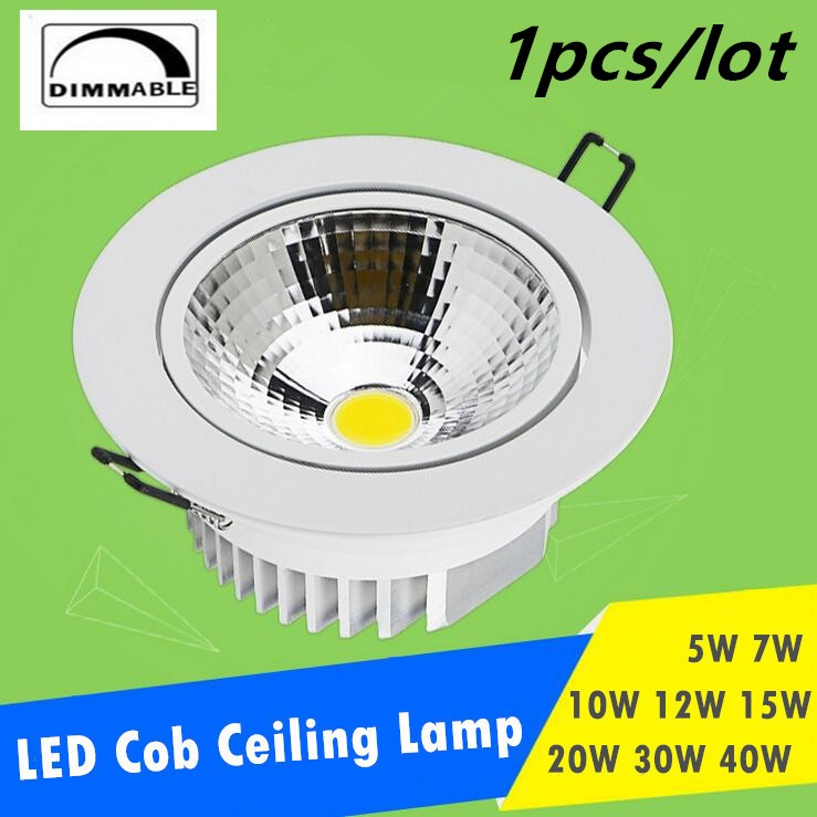 Dimmable LED Downlight 5W 7W 10W 12W 15W 20W 30W Spot LED DownLight - შიდა განათება - ფოტო 1