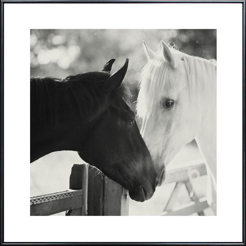 Holland Leinwand Malerei moderne Ölgemälde Tier Pferd Kopf - Wohnkultur - Foto 5