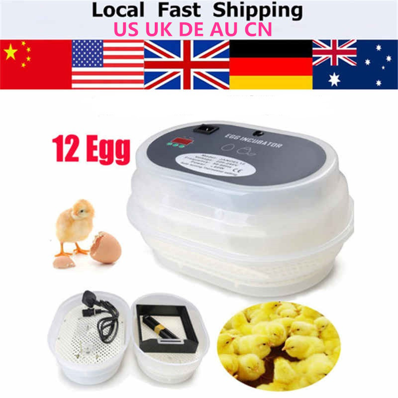 mini egg incubator automatic 12 China cheap Chicken egg incubator hatching machine china cheap hathery 12 egg incubator automatic brooder machines for hatching eggs