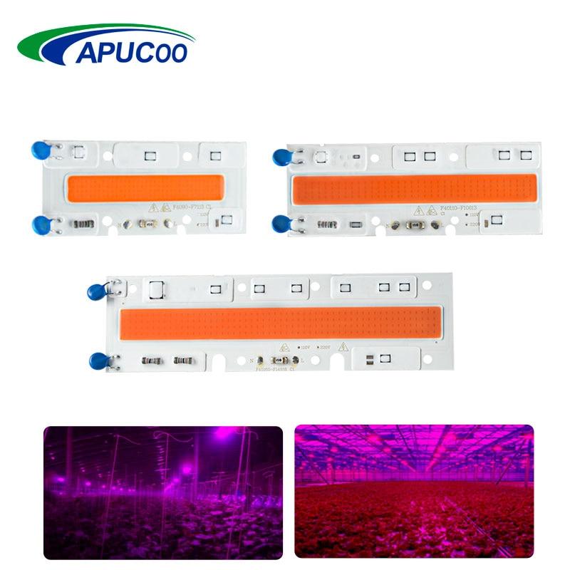 Led Flood Light Spectrum: Full Spectrum LED Phyto Lamp Flood Lights High Power COB