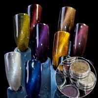 3D Cat Eye Aimant Poudre Poussière Magique Miroir Effet Glitter UV Gel Polonais DIY Nail Outil Manucure Set 12 Boîte