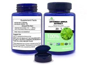 Image 2 - Natural  Artemisia Annua Extract  20:1  100pcs /bottle 100%  Artemisia Annua Extract 20:1