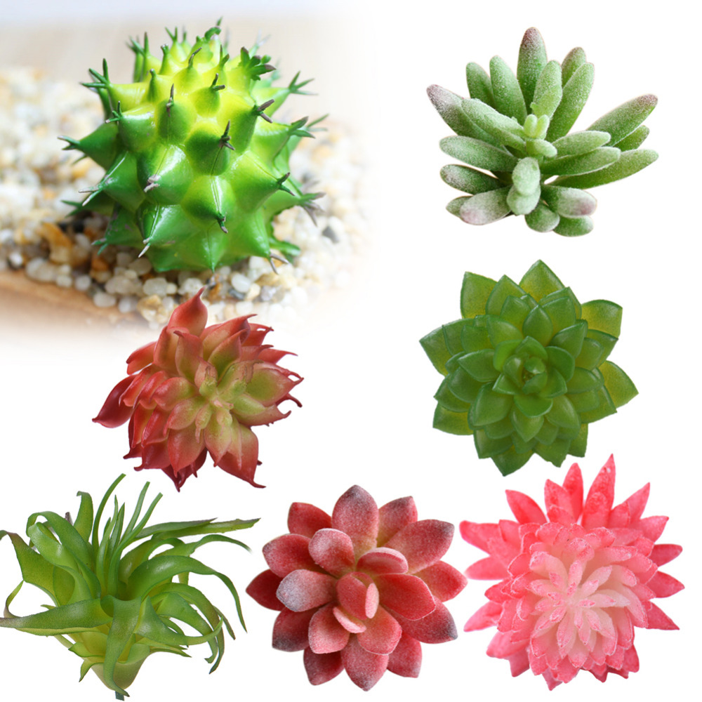 Artificial succulents plants grass desert artificial plant for Artificial plants for decoration