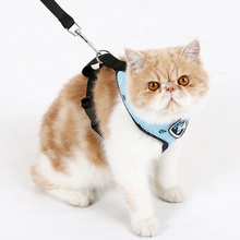 Charming Cat Harness with Leash Rope