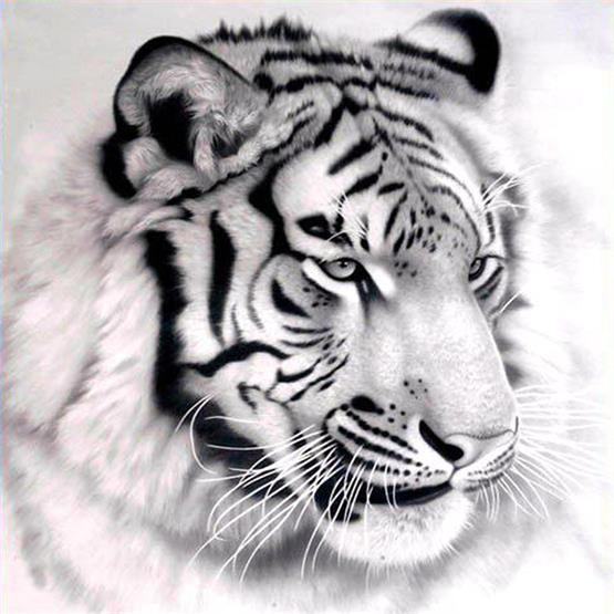 2016 diy diamante pintura 3d diamante bordado tigre fotos de kits de - Artes, artesanía y costura