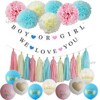 Gender Reveal Party Supplies Kit Boy or Girl Baby Shower Decorations Banner Paper Tassel Garland Pom Poms Latex Balloons