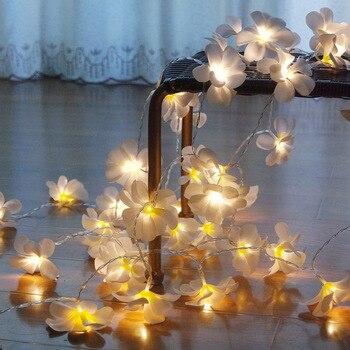 Guirnalda de luces LED de 10M 80 Flor de frangipani, decoración floral de la luz de las vacaciones de la batería, decoración de la guirnalda de la fiesta del evento, decoración del dormitorio
