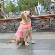 Pets French Bulldog Clothing