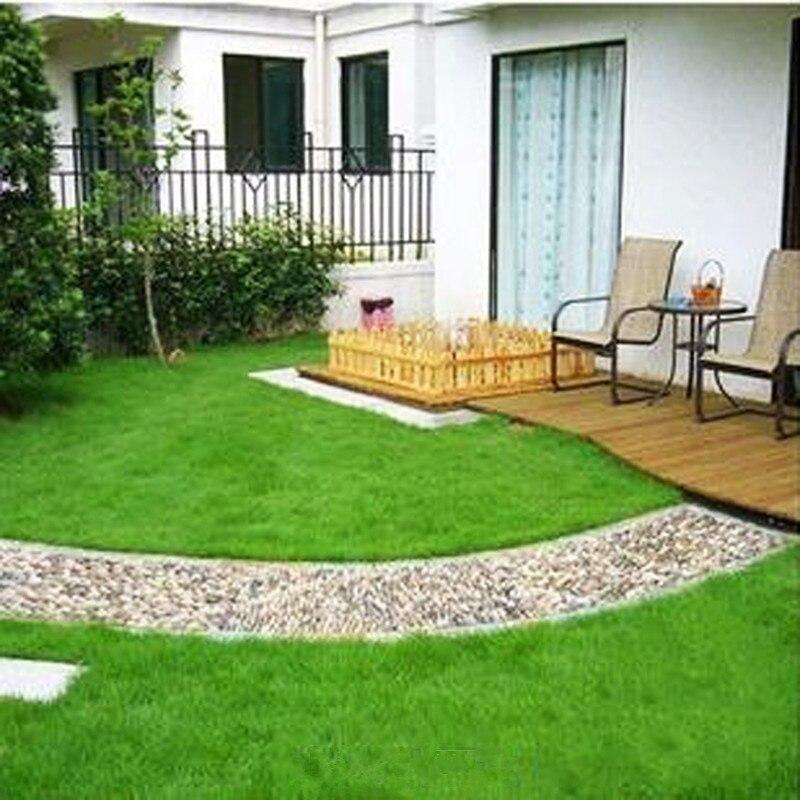 500seeds Garden Flowers Seeds Four Seasons Grass Lawn Seeds   Resistant  Trampled Villa Courtyard Planting(
