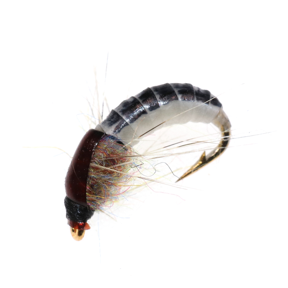 Bimoo 6PCS #12 Realistic Nymph Scud Fly for Trout Fishing Nymphing Artificial Insect Bait Lure 13