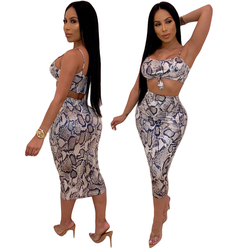 Echoine Fashin Snake Print 2 Piece Outfits For Women Spaghetti Straps Crops Top And Dress Slinky Sexy Ladies Summer Clothing