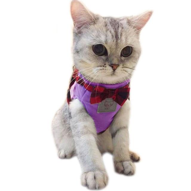 Cute Elegant British Style Vest+Leash Set 2