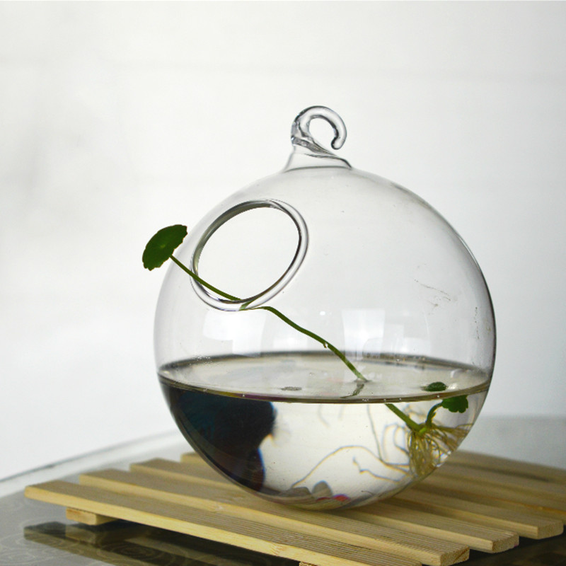 Diameter=10cm Clear Glass Material Glass Terrarium Aquarium Home Decorative Handmade Hanging Fishbowl Flat and Round Bottom(China)