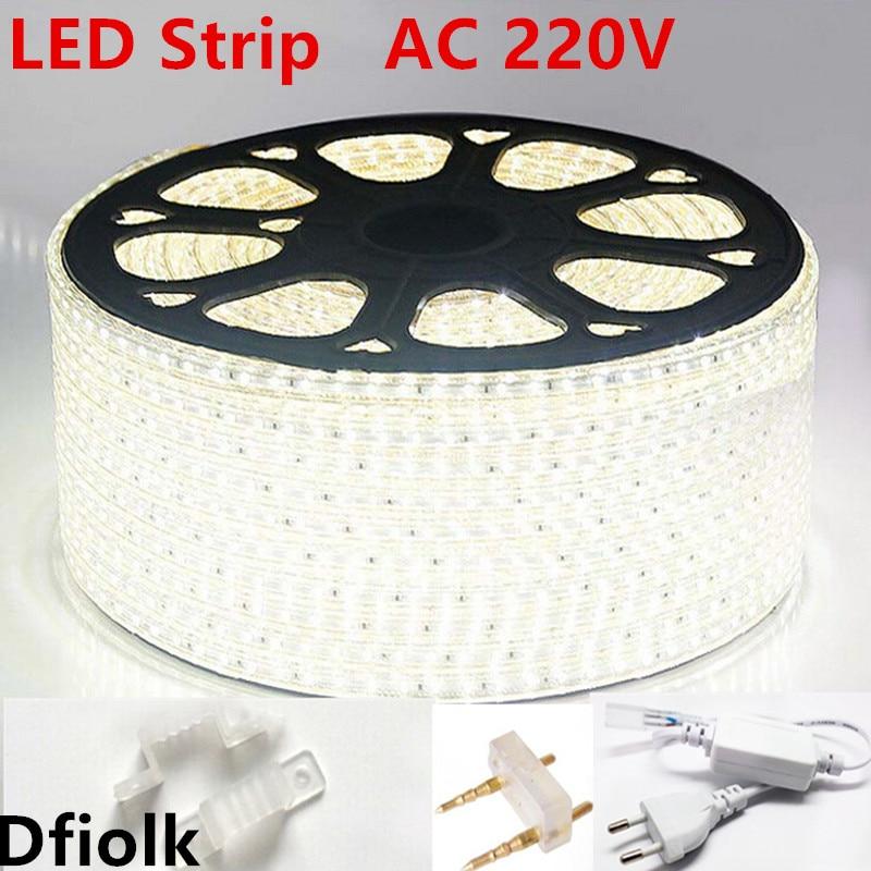 AC220V Led Strip Light 3014 120led/m Waterproof IP65 Led Tape With Power Plug Led Rope Ribbon White Blue Led Lamp