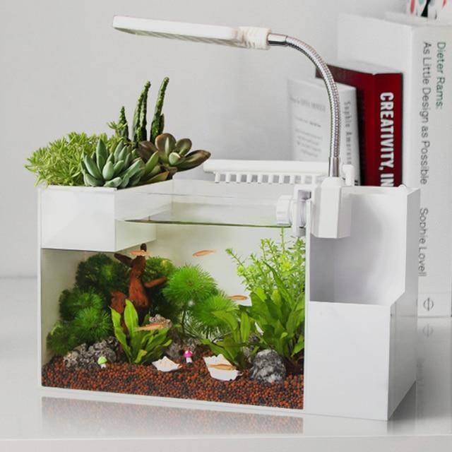 Creative Ecologies Amphibious Tank Aquarium Landscaping