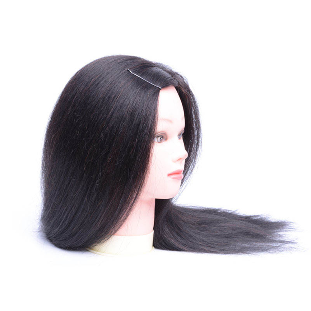 Buy Long Hair Mannequin Head With 80% Human Hair 20% Animal Hair For Training Head Cosmetology Hair Styling for only 49 USD