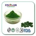 Clorofila clorofila líquida em pó quebrado célula chlorella em pó