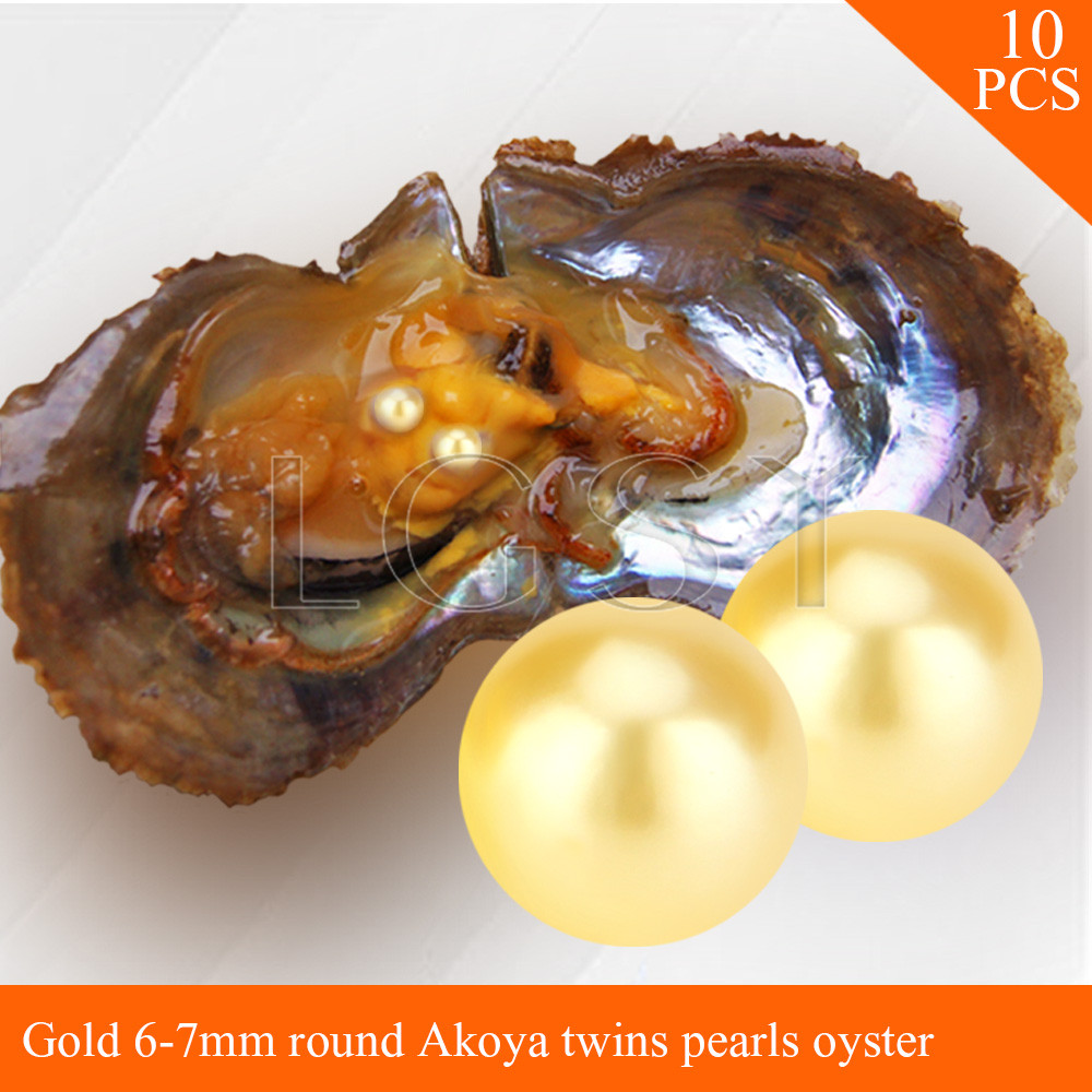 LGSY FREE SHIPPING Bead Gold 6-7mm round Akoya twin pearls in oysters with vacuum package for women jewelry making 10pcs cluci free shipping get 40 pearls from 20pcs 6 7mm aaa blue round akoya oysters twins pearls in one oysters