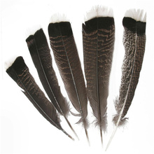 Wholesale Natural Eagle Feathers 25-30cm/10-12inch Turkey Pheasant Bird for Crafts Jewelry Making Carnival Plumes