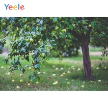 Yeele Landscape Photocall Fruits Tree Vitality Nice Photography Backdrops Personalized Photographic Backgrounds For Photo Studio