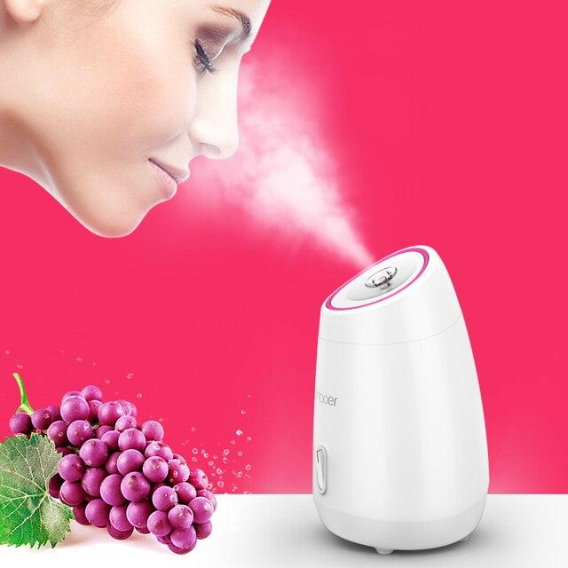 フルーツ野菜フェイシャルフェイススチーマー家庭用スパ美容器熱ナノスプレー水美白顔汽船機