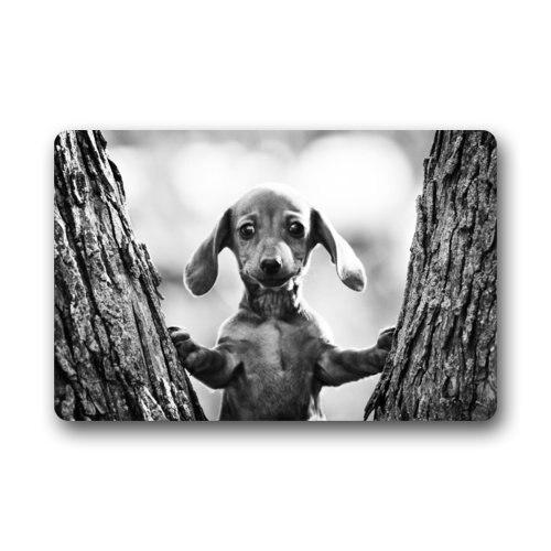 Fashionable Cute Baby Dachshund Dog Grey Image Doormat - Quick Drying Door Mat