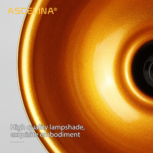 Image 5 - Wand lampe, Industrielle vintage wand licht, Eisen Retro leuchte, Halterung einstellbar, E27, CE zertifizierung, 90 260 V, max 60 W, 16x21,5 cm (DxA)