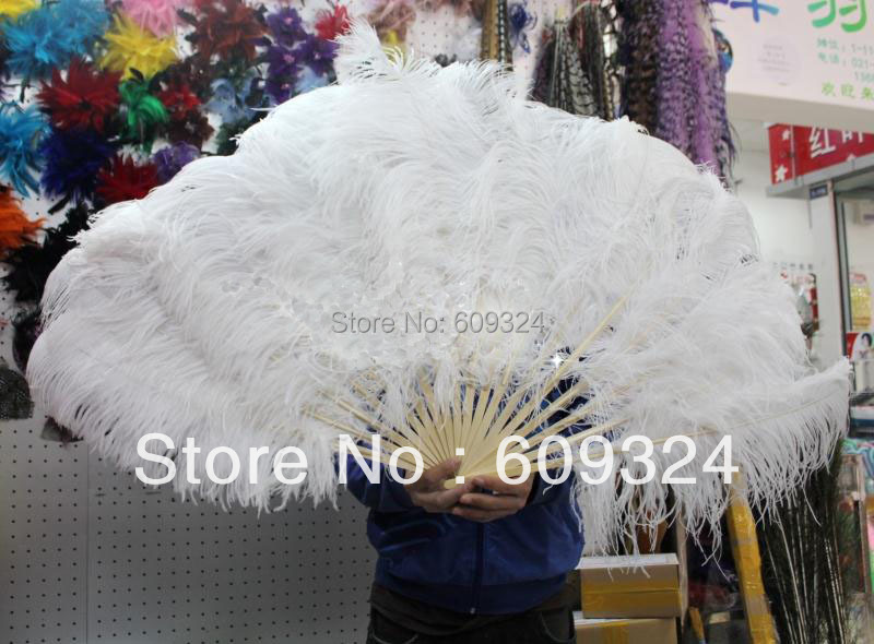 Peacock Feather and White Ostrich Feather Hand Fan