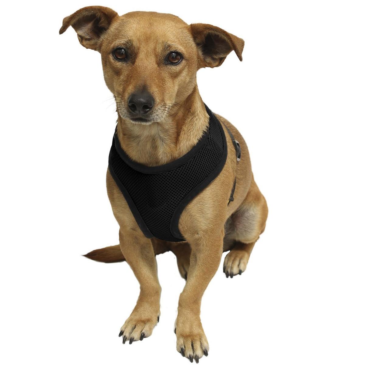 1 St Puppy Kat Kraag Huisdier Vest Borst Riem Riem Nieuwe Verstelbare Hond Lijn Met Ademend Nylon Mesh Vest Comfortabel Harnas Hond Wees Vriendelijk In Gebruik
