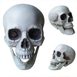 Настоящий череп